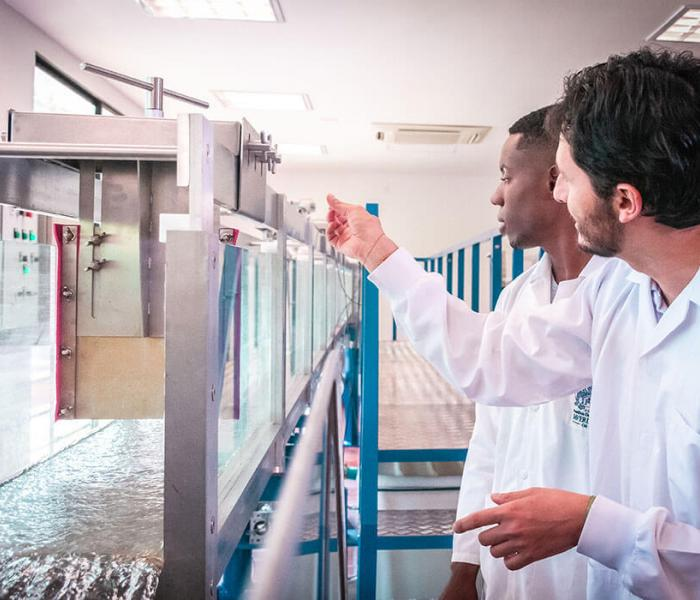 Ingeniería Civil en la Javeriana Cali